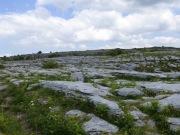 The Burren (1)