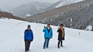 Three winter wanderers
